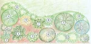 Создание цветника