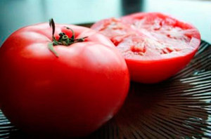 Урожайные и низкорослые томатов
