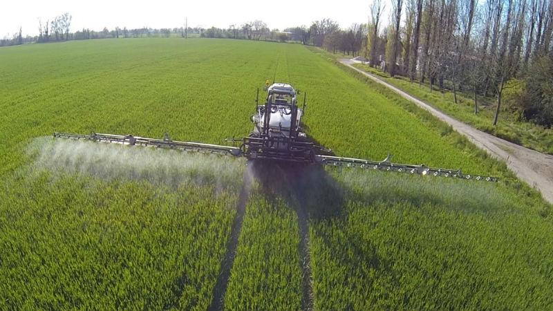Чем хороша азотная подкормка озимой пшеницы и каким образом её вносят