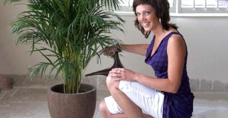 пальма финиковая комнатная уход в домашних